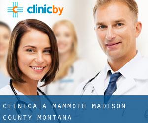 clinica a Mammoth (Madison County, Montana)